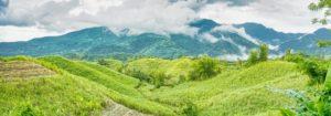 アメリカ英語圏で通用する英語をフィリピンで格安学習