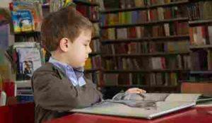 海外在住の子供に日本語教育!移住者向け教材:ネッティー